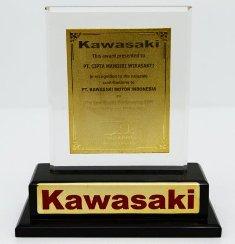 Kawasaki - The Best Quality Performance 2009